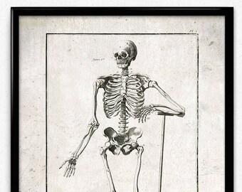 Grave Digging Skeleton Vintage Print - Skeleton Poster - Anatomy Skeleton Art - Office Decor - Office Art - Doctor Decor - Anatomy Print