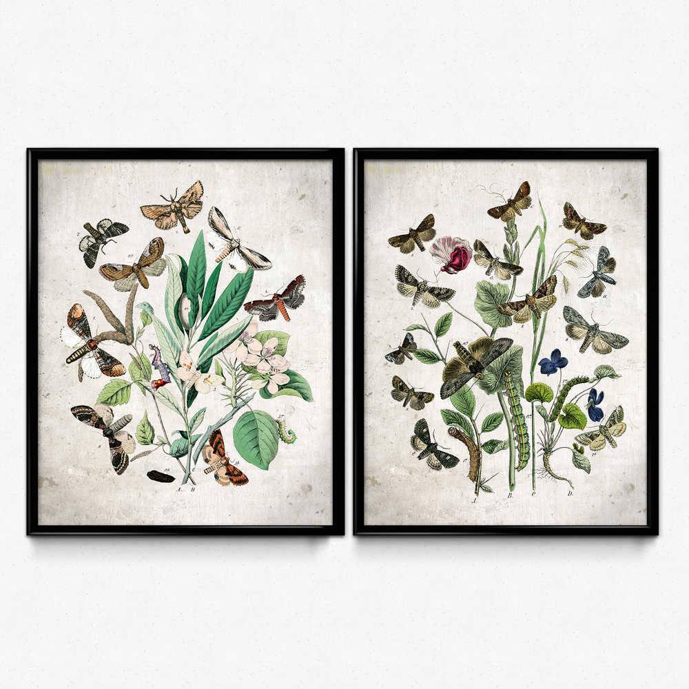 2er Set Garten Schmetterlinge Schmetterlinge Poster | Etsy