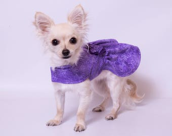 xx-small and x-small purple reversible dog dress