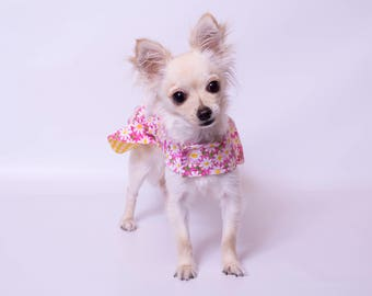 xx-small or x-small Reversible Daisy  Dog Dress