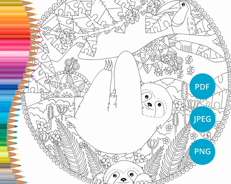 Sloth coloring pages Adult coloring book printable Coloring | Etsy