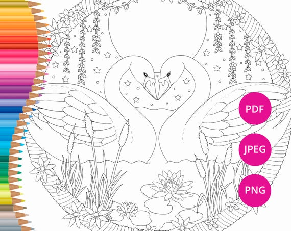 Valentines Coloring Pages Swan Coloring Pages Adult Coloring Etsy