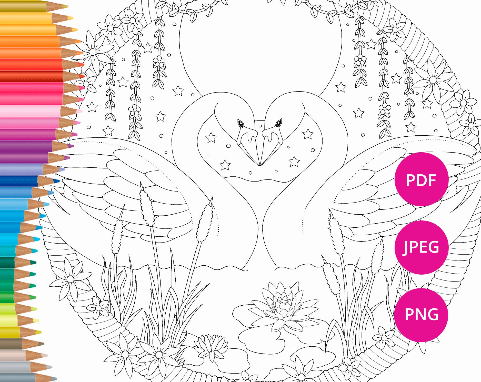 Valentines coloring pages Swan coloring pages Adult coloring | Etsy