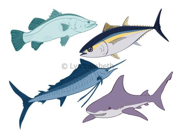 Fish Clipart Tuna Shark Sailfish Barramundi Ocean Clip Art