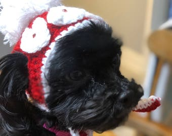 Crocheted Dog Hats