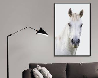 White Horse, White Horse Photo, Horse Photography, White Horse Print, White Horse Poster, Animal Print, Equestrian, Nursery Animals, Horse