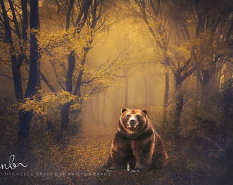 Bear in magical forest digital background backdrop for photography