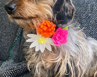 Summer Floral Collar Accessory - 3 Flowers