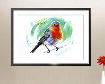 Robin Painting Watercolour Illustration Limited Edition. Bird painting, Bird illustration,Robin