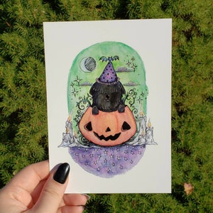 Shaggy Black Dog in Pumpkin Print 5 x 7