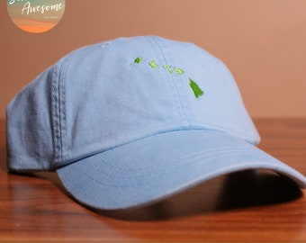 d844c26b57d Hawaii State Dad Hat