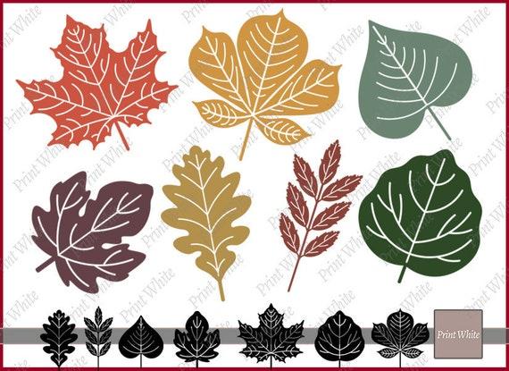 Leaf Svg Fall Leaves Svg Fall Svg Leaves Clipart Maple Leaf Etsy