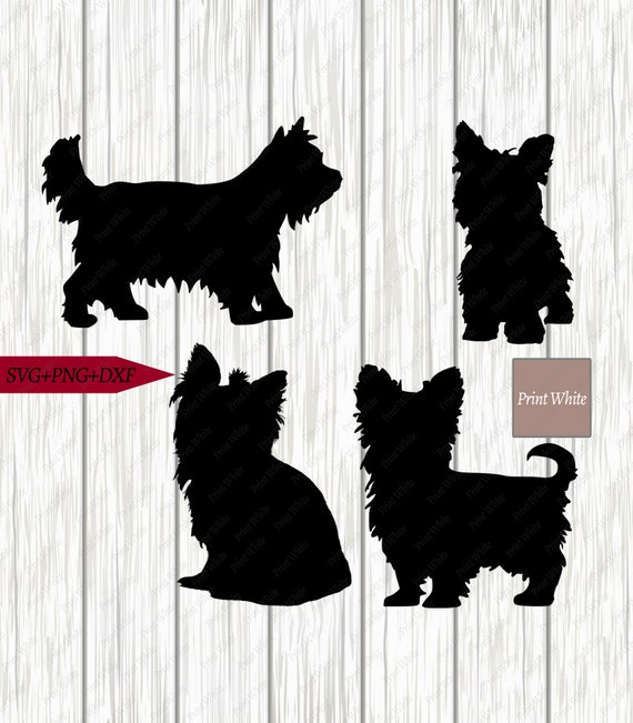 Yorkie Svg Dxf Png Yorkshire Terrier Silhouette Cut File Etsy