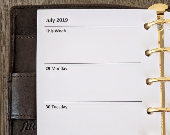 Pocket Academic July 2018-19 Week-on-Two-Pages planner calendar refill  printed insert