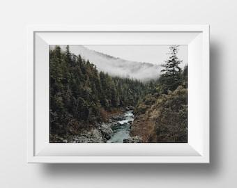 Forest Print, Nature Print, Nature Art, Nature Photography, River Art, Wall Art, Nature Photography, Art Print, Instant Download Art