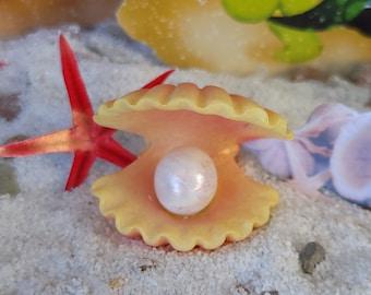Every Mermaid Needs Her Own Pearl In A Shell, Beach, Mermaid GArden, Pearl, Fairy Garden, Dollhouse, Miniature, Shells, Mermaid Garden, Cute