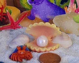 Look What Our Little Crab Friend Has Found, Beach, Mermaid GArden, Pearl, Fairy Garden, Dollhouse, Miniature, Shells, Mermaid Garden, Cute
