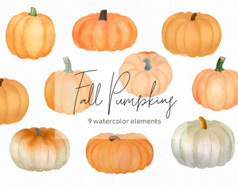 Watercolor Pumpkins - Orange Pumpkin - White pumpkin- gold pumpkin - Watercolor pumpkins - fall clipart - instant download - Commercial Use