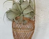 Vintage Basket Wall