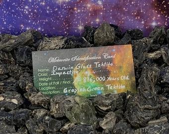 DARWIN GLASS Tektite Natural Darwinite Ancient