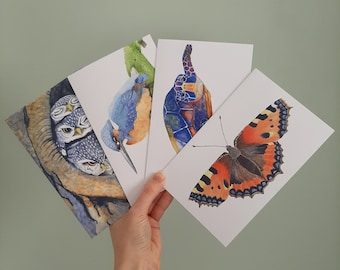 4 large postcards with envelopes: kingfisher, green sea turtle, butterfly and owls. Watercolour prints.