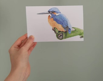 Large postcard with envelope. Watercolour illustration of a kingfisher