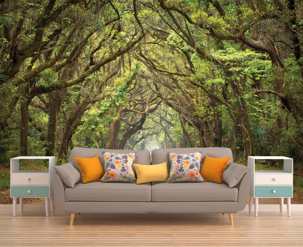 Tree Wallpaper Forest Wallpaper Tree Wall Mural Nature