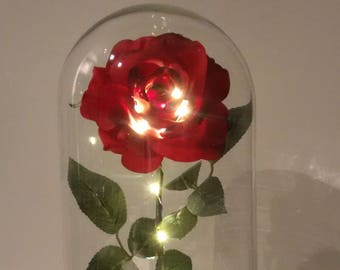 Enchanted Roses - Inspired by Beauty and the Beast