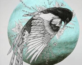 Afterlife: Black-Billed Magpie Print