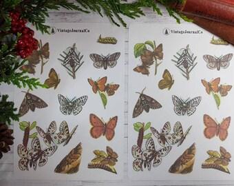 24 Piece Vintage Butterfly Sticker Sheets   Planner Stickers   Sticker Pack   Sticker Set   Insect Stickers   Reward Stickers   Pretty