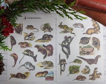 27 Piece Vintage Little Animals Sticker Sheets   Planner   Journal   Happy Planner   Nature   Squirrel   Hamster   Mouse   Mice   Scrapbook