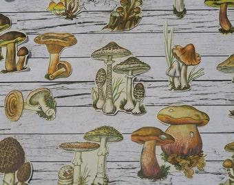 28 Piece Vintage Mushrooms Sticker Sheets | Fungi | Nature | Planner | Sticker Set | Journal | Erin Condren | Happy Planner | Scrapbook
