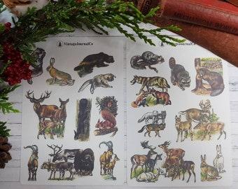 18 Piece Vintage Woodland Animals Sticker Sheets   Deer   Rabbit   Stag   Squirrel   Fox   Embellishments   Planner   ECLP   Cute   Happy