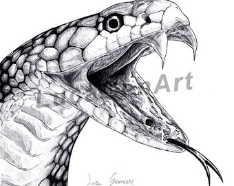 Cobra Snake handmade Drawing, Digital Print, Art Print, Made in pencil, charcoal and ink, Realistic Drawing