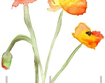 Poppies 1 digital download of an original watercolor painting
