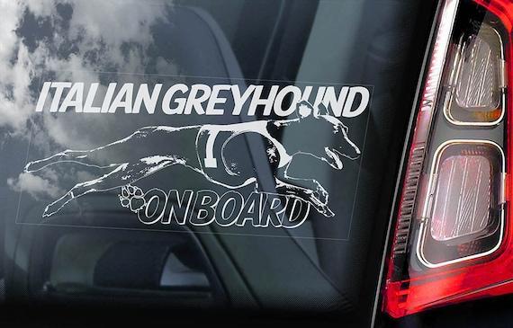 Italian Greyhound on Board  - Car Window Sticker - Levrette d'Italie Galgo italiano Dog Sign Decal  -V04