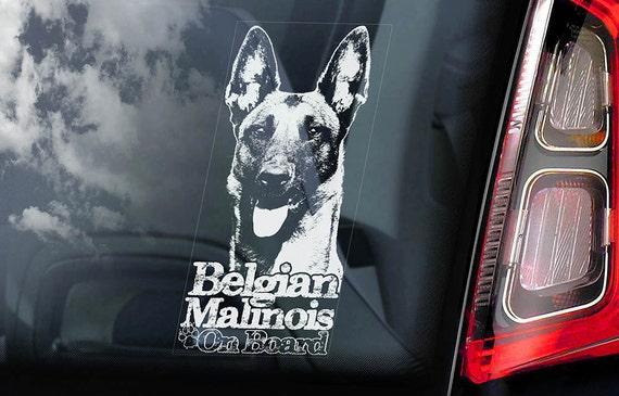 Belgian Malinois on Board - Car Window Sticker - Mechelse Herder Security K9 Dog Sign Decal  -V10