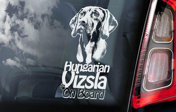 Vizsla on Board - Car Window Sticker - Magyar Hungarian Pointer Dog Sign Decal - V01