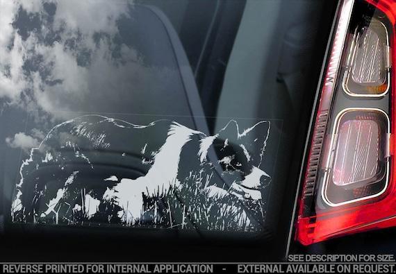 Border Collie - Car Window Sticker - Dog Sign Scottish Sheepdog Decal - V10