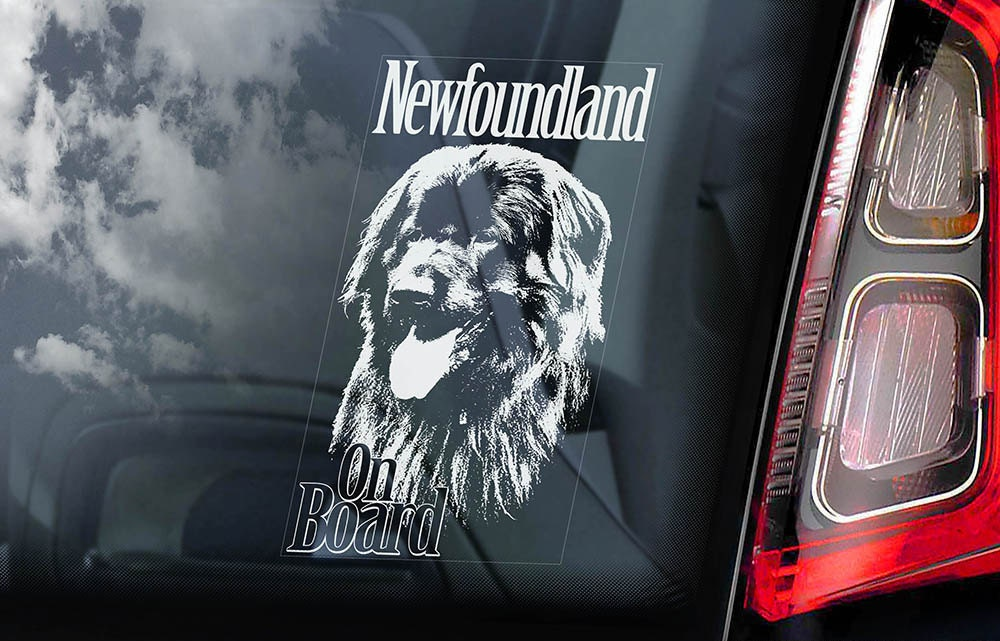 Newfoundland Car Window Decal