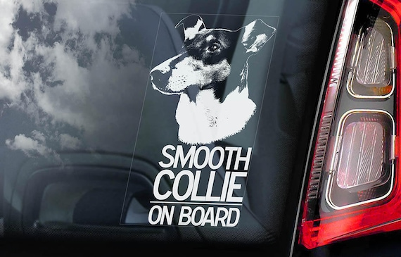 Smooth Collie - Car Window Sticker - Dog Sign Decal Sign Art Gift - V01