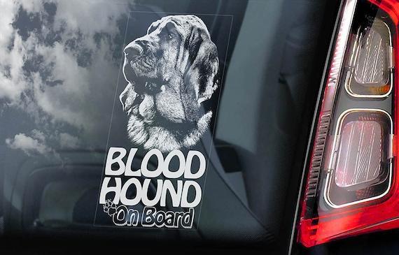 Bloodhound on Board - Car Window Sticker - Chien de Saint-Hubert Dog Sign Decal Art Gift - V01