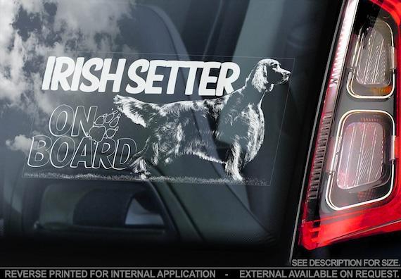 Irish Setter on Board  - Car Window Sticker - Irish Red Dog Sign Decal  -V02
