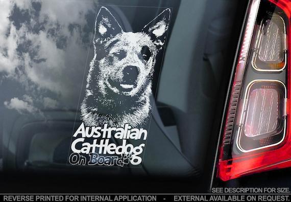 Australian Cattledog on Board - Car Window Sticker - Cattle Dog Sign Decal Gift - V03