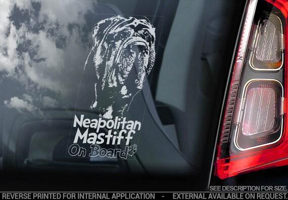Neapolitan Mastiff on Board - Car Window Sticker - Mastino Napoletano Dog Sign Decal - V02