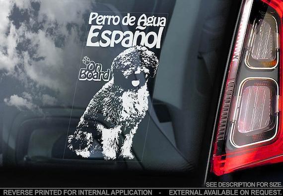 Perro de Agua Español on Board - Car Window Sticker - Espanol Spanish Water Dog Sign Decal - V01