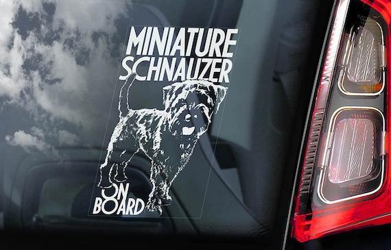Miniature Schnauzer on Board - Car Window Sticker - Zwergschnauzer Dwarf Dog Sign Decal - V02