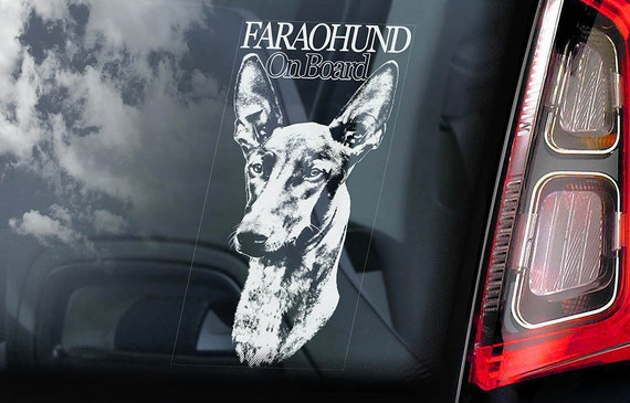 Faraohund on Board - Car Window Sticker - Pharaoh Hound Dog Sign Gift Decal - V01