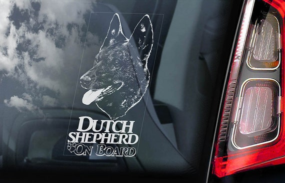 Dutch Shepherd on Board - Car Window Sticker - Hollandse Herder Dog Sign Gift Decal - V03