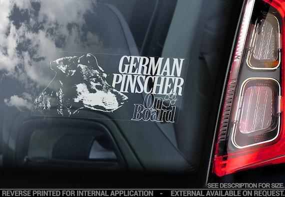 German Pinscher on Board - Car Window Sticker - Deutscher Dog Sign Decal - V01